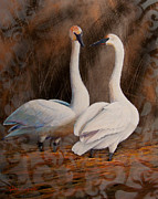 Migratory Bird Painting Framed Prints - Quiet Conversation Framed Print by Dee Carpenter