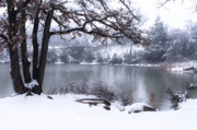 Quiet Moments In Winter Print by Tamyra Ayles