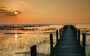 Chincoteague Island Prints - Quiet Time Print by Steven Ainsworth