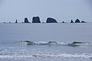 Surf Silhouette Posters - Quileute Needles Poster by Sean Griffin