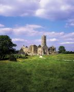 Cemeteries Photos - Quin Abbey, Quin, Co Clare, Ireland by The Irish Image Collection