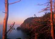 Lubec Prints - Quoddy Head Ocean Cliffs Print by John Burk