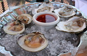 Anne Babineau - Quonset oysters and littlenecks