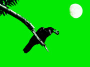Perigee Moon Prints - Quoth The Raven Nevermore . Green Print by Wingsdomain Art and Photography