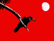 Perigee Moon Prints - Quoth The Raven Nevermore . Red Print by Wingsdomain Art and Photography
