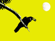 Perigee Moon Prints - Quoth The Raven Nevermore . Yellow Print by Wingsdomain Art and Photography