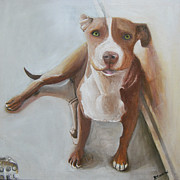 Pitbull Originals - Ra pup by Vasiliki Yiakatou