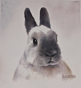 Nursery Room Art Prints Paintings - Rabbit Portrait by Teresa Silvestri