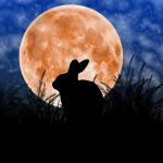 Rabbit Digital Art Metal Prints - Rabbit Under the Harvest Moon Metal Print by Elizabeth Alexander