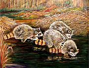 Carol Allen Anfinsen Metal Prints - Raccoons at Sunrise Metal Print by Carol Allen Anfinsen