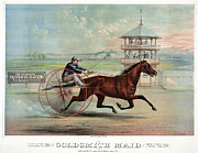 Horse Whip Prints - Racehorse: Goldsmith Maid Print by Granger