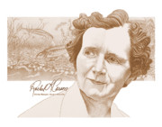 Marine Drawings Framed Prints - Rachel Carson Framed Print by John D Benson