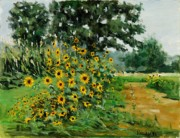Blooming Paintings - Rachels Sunflowers by Robert James Hacunda