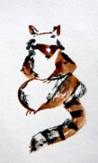 Calligraphy Drawings Prints - Racoon Print by Mindy Newman