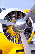 Plane Radial Engine Framed Prints - Radial Power Framed Print by Tim Grams