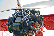 Airplane Radial Engine Photos - Radial  by Steven Richardson