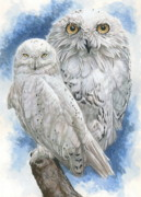 Owls Mixed Media - Radiant by Barbara Keith