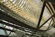 Architecture Photos - Rafaels Glass Roof by Eena Bo