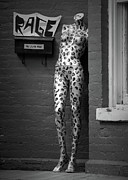 Rage Print by John Burnett