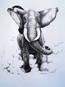 Attacking Drawings - Raging Elephant by A Karron