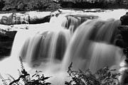 Rushing Water Prints - Raging Waters Print by Melissa Petrey