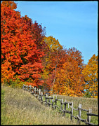 Reds Of Autumn Acrylic Prints - Rail Fence in Fall Acrylic Print by Peg Runyan