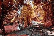 Rail Digital Art Posters - Rail Road along Brandywine Creek Poster by Bill Cannon