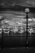 Streetlight Photos - Railings At Bangor Promenade And Marina County Down Northern Ireland by Joe Fox