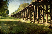 Tamyra Ayles Metal Prints - Railroad Bridge Metal Print by Tamyra Ayles