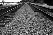 Railroads Photos - Railroad Tracks . Black and White by Wingsdomain Art and Photography