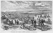 Railroading: U.s.a Print by Granger