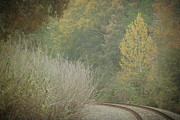 East Texas Posters - Rails Curve Into a Dreamy Autumn Poster by Lisa Holmgreen