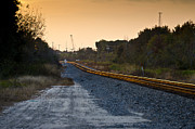 Gravel Road Prints - Railway Into Town Print by Carolyn Marshall