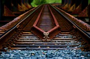 Rust Pyrography Metal Prints - Railway track leading to where Metal Print by Blair Stuart