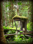 Rain Forest Telephone Booth Print by Tanya  Searcy