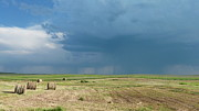 Estephy Sabin Figueroa Photo Posters - Rain on the Prairie Poster by Estephy Sabin Figueroa