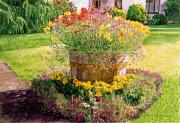 Barrels Prints - Rainbarrel Garden Print by David Lloyd Glover