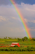 Bo Insogna Posters - Rainbow and Red Barn Poster by James Bo Insogna