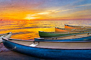 Coral Cove Prints - Rainbow Armada Print by Debra and Dave Vanderlaan