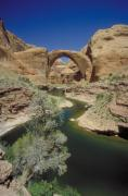 Origin Photo Posters - Rainbow Bridge Upstream Poster by Jerry McElroy