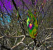 Tree Blossoms Digital Art Prints - Rainbow Explosion Print by JoAnn SkyWatcher