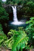 Hilo Framed Prints - Rainbow Falls Framed Print by Peter French - Printscapes