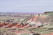 Red Rock Framed Prints Prints - Rainbow Hill Print by Andrea Hazel Ihlefeld