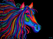 Mustang Drawings Posters - Rainbow Horse Head Poster by Nick Gustafson