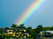Florida Panhandle Mixed Media Prints - Rainbow in Naples Print by Dennis Dugan