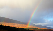 Rainbow In Scotland Print by Holger Ostwald