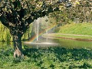 Peaceful Pond Framed Prints - Rainbow in the Park Framed Print by Georgia Fowler