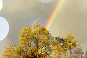 Tranquil Mountaintop Art - Rainbow In The Trees by Debra     Vatalaro
