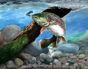 Trout Posters - Rainbow Poster by Kathleen Kelly Thompson