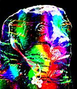 Labrador Digital Art - Rainbow Lab by Barbara Griffin